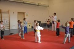 judo_ms_minisvet (11)