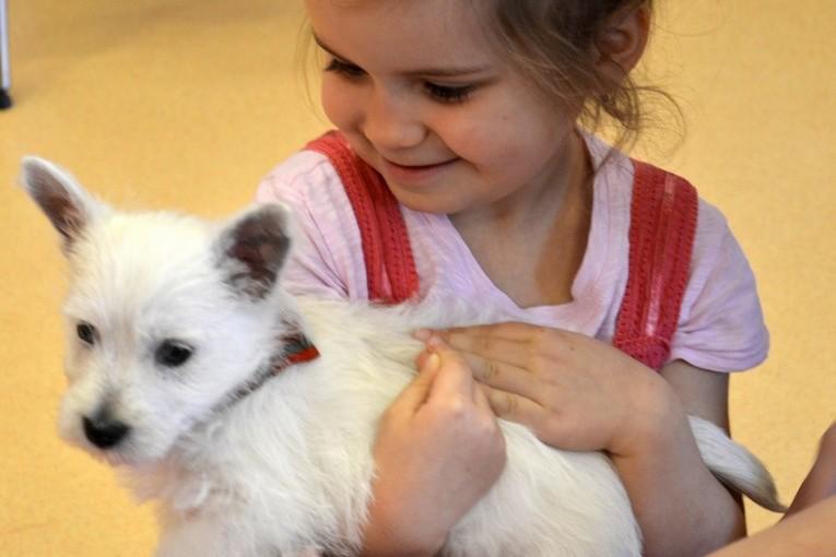 Náš domácí mazlíček – rodinné projekty – 19.dubna