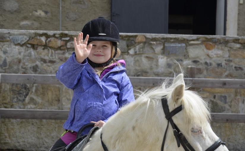 Hurá jedeme na koně