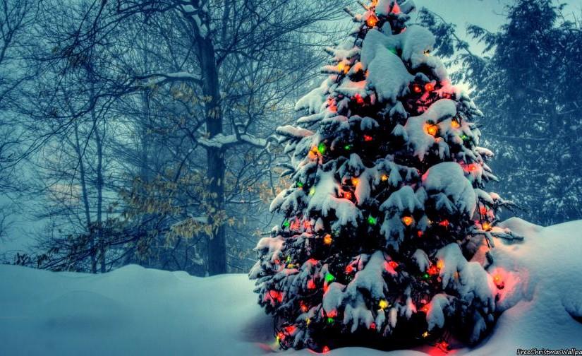 Ozdobíme stromek na návsi – 21.prosince