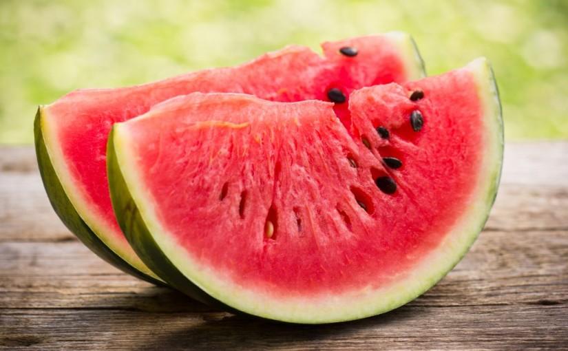 sklizen melounu v materske skolce minisvet